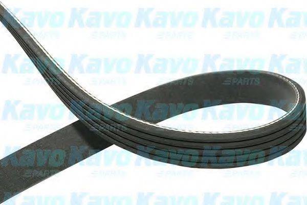 KAVO PARTS DMV5512 Поликлиновой ремень