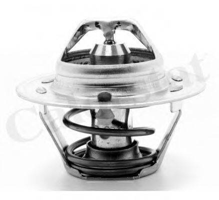 Термостат, охлаждающая жидкость CALORSTAT BY VERNET TH1477.87J
