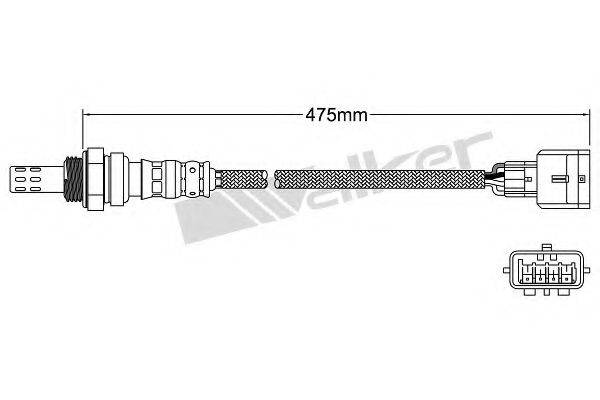 WALKER PRODUCTS 250-241101