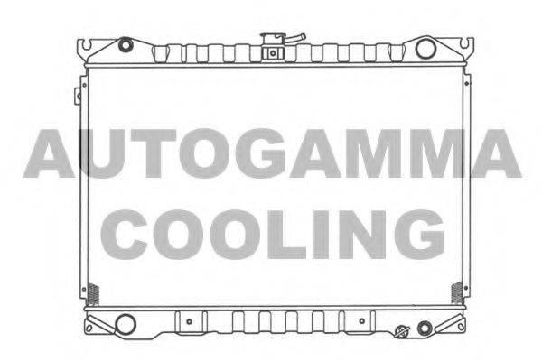 AUTOGAMMA 100611 Радиатор, охлаждение двигателя